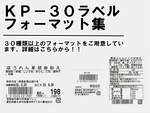 フォーマット集紹介写真